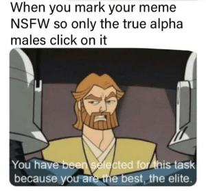 we need you: When you mark your meme  NSFW so only the true alpha  males click on it  You have been selected for ihis task  because you are the best, the elite. we need you