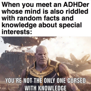 My distraction to the simplest things is inevitable: When you meet an ADHDer  whose mind is also riddled  with random facts and  knowledge about special  interests:  memetherap  adhd  YOU'RE NOT THE ONLY ONE CURSED  WITH KNOWLEDGE My distraction to the simplest things is inevitable
