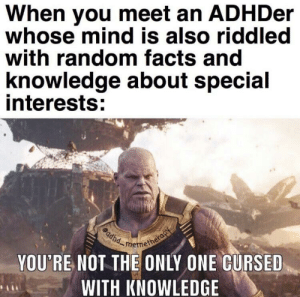 🧠: When you meet an ADHDer  whose mind is also riddled  with random facts and  knowledge about special  interests:  YOU'RE NOT THE ONLY ONE CURSED  WITH KNOWLEDGE 🧠