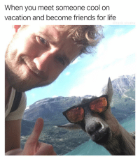 Dude, Funny, and Life: When you meet someone cool on  vacation and become triends for life Dude give me your email