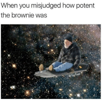 Memes, 🤖, and How: When you misjudged how potent  the brownie was  TopTree @maryjaneminded