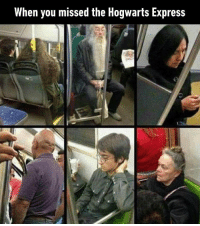 9gag, Memes, and Express: When you missed the Hogwarts Express Dobby's messing with the entrance again harrypotter hogwarts 9gag