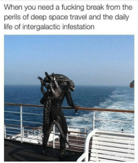 deep space: When you need a fucking break from the  perils of deep space travel and the daily  life of intergalactic infestation