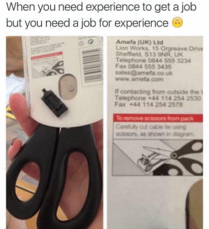 College, Dank, and Memes: When you need experience to get a job  but you need a job for experience  Amefa (UK) Ltd  Lion Works, 15 Orgreave Drive  Sheffield, S13 9NR, UK  Telephone 0844 555 3234  Fax 0844 555 3435  sales@amefa.co.uk  www.amefa.com  If contacting from outside the  Telephone +44 114 254 2530  Fax +44 114 254 2578  To remove scissors from pack  Carefully cut cable tie using  scissors, as shown in diagram My job search after college by BlackBox- MORE MEMES