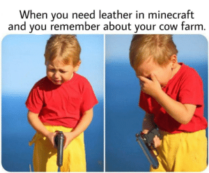 Memes, Minecraft, and Tumblr: When you need leather in minecraft  and you remember about your cow farm. 30-minute-memes:  Saddest thing I ever had to do..