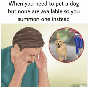 https://t.co/b79hPtpCGT: When you need to pet a dog  but none are available so you  summon one instead  wiki How https://t.co/b79hPtpCGT