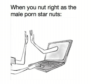 bff forever: When you nut right as the  male porn star nuts: bff forever