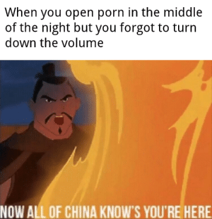 China, Porn, and The Middle: When you open porn in the middle  of the night but you forgot to turn  down the volume  NOW ALL OF CHINA KNOW'S YOU'RE HERE Big Oof