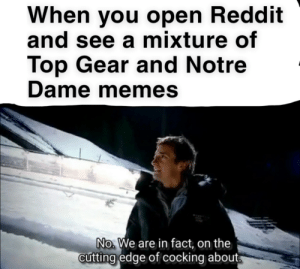 """James May, Memes, and Reddit: When you open Reddit  and see a mixture of  Top Gear and Notre  Dame memes  No We are in fact, on the  cutting edge of cocking about """"oh cock."""" -James May, numerous times"""