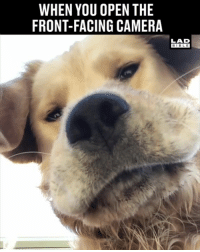 Dank, Bible, and Camera: WHEN YOU OPEN THE  FRONT-FACING CAMERA  LAB  BIBLE I know this feeling too well 😂😂