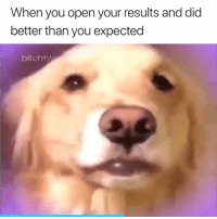Open, Did, and You: When you open your results and did  better than you expected  bitchtw 😂😫