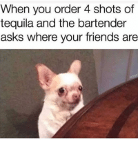 Friends, Funny, and Tequila: When you order 4 shots of  tequila and the bartender  asks where your friends are 😩