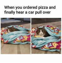 Memes, Pizza, and 🤖: When you ordered pizza and  finally hear a car pull over 🍕😍
