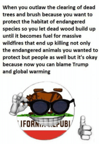 Animals, Global Warming, and Memes: When you outlaw the clearing of dead  trees and brush because you want to  protect the habitat of endangered  species so you le  until it becomes fuel for massive  wildfires that end up killing not only  the endangered animals you wanted to  protect but people as well but it's okay  because now you can blame Trump  and global warming  t dead wood build up  IFORNLPUBI (GC)
