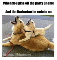 Wait! What is this? #dnddoggoday? Well, #dndcaturday gets lots of love every week, so giving the pups some more flare is never impolite. Heck.  -Law: When you piss off the party Gnome  And the Barbarian he rodein on Wait! What is this? #dnddoggoday? Well, #dndcaturday gets lots of love every week, so giving the pups some more flare is never impolite. Heck.  -Law