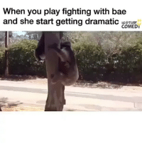 Bae, Memes, and Mexican: When you play fighting with bae  and she start getting dramatic IGOTURF  COMEDI Tag bae 😂 FOLLOW US➡️ @so.mexican via:@turfcomedy