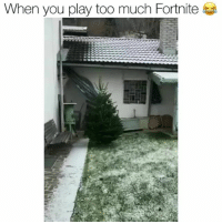 Funny, Too Much, and Mario: When you play too much Fortnite Be one with the bush Lmfaooo 😂 fortnite Via Mario Meinschad