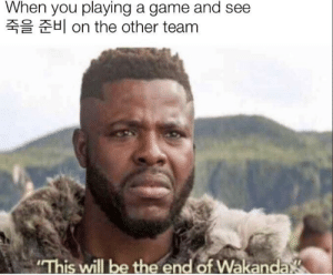 """Rewatched infinity war for the 6th time: When you playing a game and see  H on the other team  """"This will be the end of Wakanda Rewatched infinity war for the 6th time"""