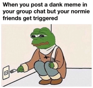 Danke Meme: When you post a dank meme in  your group chat but your normie  friends get triggered