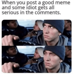 This is so damn true.: When you post a good meme  and some idiot gets all  serious in the comments. This is so damn true.