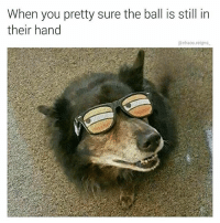 Memes, 🤖, and Following: When you pretty sure the ball is still in  their hand  @chaos.reigns r u bamboozlin me fren? thanks for following @chaos.reigns_