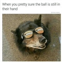 You, Ball, and Still: When you pretty sure the ball is still in  their hand  @chaos.reigns