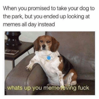 """<p>Wuts good via /r/memes <a href=""""http://ift.tt/2siJXB0"""">http://ift.tt/2siJXB0</a></p>: When you promised to take your dog to  the park, but you ended up looking at  memes all day instead  whats up you meme oving fuck <p>Wuts good via /r/memes <a href=""""http://ift.tt/2siJXB0"""">http://ift.tt/2siJXB0</a></p>"""