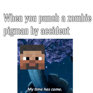 THink Im early for the minecraft meme fest in may but oh well: When you punch a zombie  pigma byacident  My time has come. THink Im early for the minecraft meme fest in may but oh well