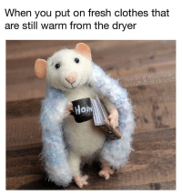 Clothes, Fresh, and Nice: When you put on fresh clothes that  are still warm from the dryeir  kleweec Feeling nice and toasty 🍞