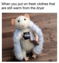 Clothes, Fresh, and Memes: When you put on fresh clothes that  are still warm from the dryer  ckleweed  Hom https://t.co/NTnK40rxyq