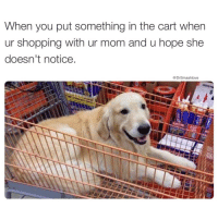 "Memes, Zero, and Desk: When you put something in the cart when  ur shopping with ur mom and u hope she  doesn't notice.  @Dr Smashlove Aw hell, fvck, nah Bruh 😂. My mama had eagle eyes at the grocery store line like a MOTHERFVCKER bruh. Hershey bar? Out. Pack of gum? Out. Box of Oreos? Out plus slap 😂. That was a no brainer. I would literally see the cashier grab it and she was juuuuuuuust about to graze it across the scanner and right before the laser hit the package's bar code my mama said ""I am sorry. Please put that to the side."" And just then I would bear down, close my eyes, and SHMACK! Yep. Didn't even hurt. Just a minor sting. I expected that shit. Ayeeee thank u mama. There were a few (maybe four (4) or five (5)) times in my upbringing where I thought shit was sweet. And u were always there with a glare and that little (albeit fierce) hand to remind me that by all means, shit isn't sweet, shit was never sweet, and, to be clear, at no point in the future will shit ever be, sweet. Ain't no sweetness bih. Zero 😂. I went thru a fat phase as a adult where I would eat like 18 Twix bars at my desk like ""HAHAHAHA SEE MAMA SHIT REALLY IS SWEET"" but then I'd feel nauseous, disgusting, disgusted, and unhappy and realize, ""U know what, shit ain't sweet and that's potentially a good thing. Too much sweetness will make u sick and give u sugar diabetes."" Mama u was a wise one. Or just cruel, and your cruelty masqueraded as wisdom. One of the two. Either way, u da real MVP 😍😂😂😂"