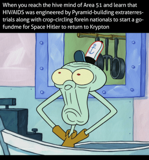 Reddit, Hitler, and Space: When you reach the hive mind of Area 51 and learn that  HIVIAIDS was engineered by Pyramid-building extraterres-  trials along with crop-circling forein nationals to start a go-  fundme for Space Hitler to return to Krypton  Whatcha lookin' at goofball? Space Hitler confirmed