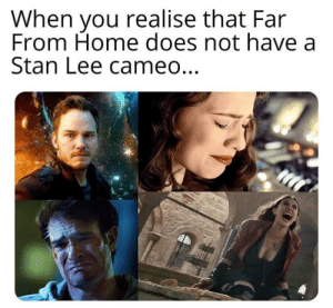 Oh noes..: When you realise that Far  From Home does not have a  Stan Lee cameo... Oh noes..