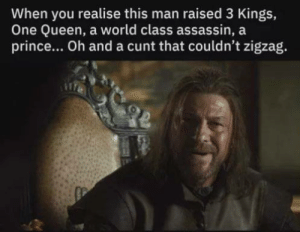 assassin: When you realise this man raised 3 Kings,  One Queen, a world class assassin, a  prince... Oh and a cunt that couldn't zigzag.