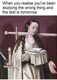 Test, Tomorrow, and Classical Art: When you realise you've been  studying the wrong thing and  the test is tomorrow