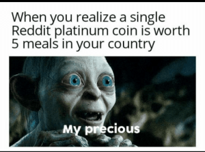 Precious, Reddit, and Single: When you realize a single  Reddit platinum coin is worth  5 meals in your country  My precious The Burger Index