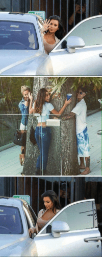 Funny, Free, and Tree: When you realize a tree got a free hug from Justin but you have to pay $2000 for it