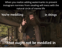 Funny Memes About Life: When you realize adding watermarks to prevent  instagram normies from stealing will mess with the  natural circle of meme life  You're meddling  in things  that ought not be meddled in