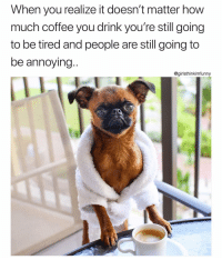 Funny, Coffee, and Annoying: When you realize it doesn't matter how  much coffee you drink you're still going  to be tired and people are still going to  be annoying..  @girlsthinkimfunny Son of a.....☹️😅 PupPic via @brussels.sprout girlsthinkimfunnytwitter humpdayhumor coffeelife puppermemes puppiesofinstagram coffeethoughts notenough wednesdaywisdom
