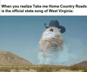 Home, Take Me Home, and Virginia: When you realize Take me Home Country Roads  is the official state song of West Virginia: