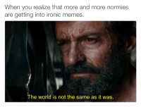 Memes, Normie, and 🤖: When you realize that more and more normies  are getting into ironic memes  The world is not the same as it was. Like Your Tumblr Dealer