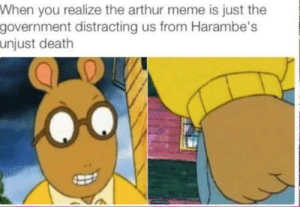 Keep ya eyes wide open: When you realize the arthur meme is just the  government distracting us from Harambe's  unjust death Keep ya eyes wide open