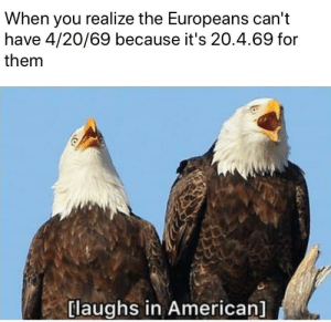 Memes, American, and 4 20: When you realize the Europeans can't  have 4/20/69 because it's 20.4.69 for  them  [laughs in American] Screeches in obesity via /r/memes https://ift.tt/2ZbCkv0