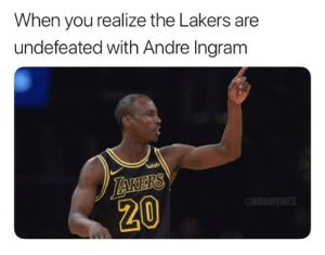Lakers to the NBA Finals confirmed.: When you realize the Lakers are  undefeated with Andre Ingram  wish  20 Lakers to the NBA Finals confirmed.