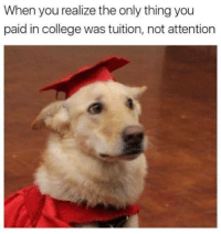 "College, Tumblr, and Blog: When you realize the only thing you  paid in college was tuition, not attention <p><a href=""http://memehumor.net/post/168868957274/paying-in-college"" class=""tumblr_blog"">memehumor</a>:</p>  <blockquote><p>Paying in college</p></blockquote>"