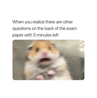 Back, Questions, and Paper: When you realize there are other  questions on the back of the exam  paper with 5 minutes left