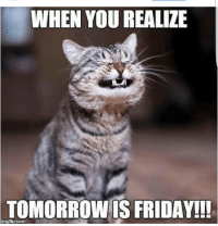 WHEN YOU REALIZE  TOMORROW IS FRIDAY!!!  ingfip.com The ONLY good thing about today! fridayeve teacherlife teachertalks