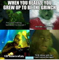 "Me🎄irl: WHEN YOU REALIZE YOU  GREW UP TO BE THE GRINCH  Am just eating  because I'm bored  HELP ME  I'm FEELING!  ""6:30, dinner with me.""  4:00 Wallow in self pity  I can't cancel that again.  shared Me🎄irl"