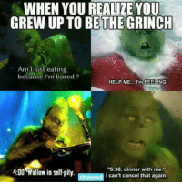 "the grinch: WHEN YOU REALIZE YOU  GREW UP TO BE THE GRINCH  just eating  because I'm bored  HELP ME.  I'm FEELING!  6:30, dinner with me.""  4:00 allow in Se  Ishared I can't cancel that again"