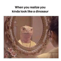 Dinosaur, Memes, and Alright: When you realize you  kinda look like a dinosaur Ya thats me alright 🐲